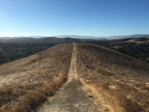 hill-trail-for-blog-50-pct